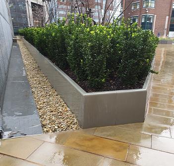 Kent's stainless steel planter edging