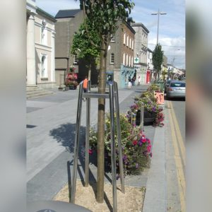 Kents square tree guard in use